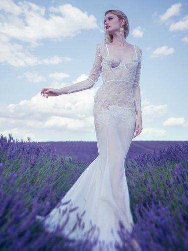 lavender1_ws